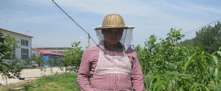 养蜂人张大帅