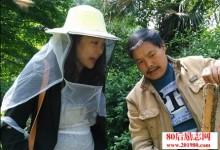 80后海归川妹回乡养蜂创业,年收入800多万-优蜜网